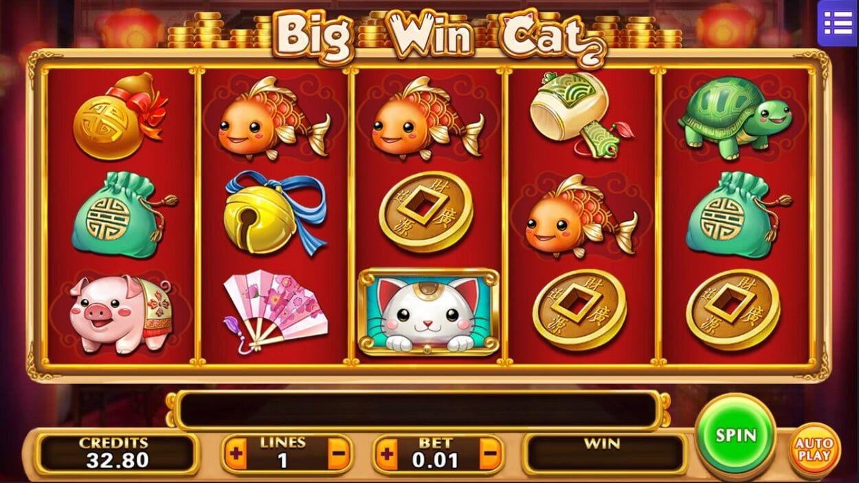 Big Win Cat Slot Gamer