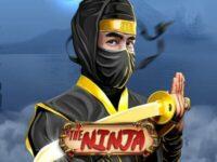 The Ninja Slot Online